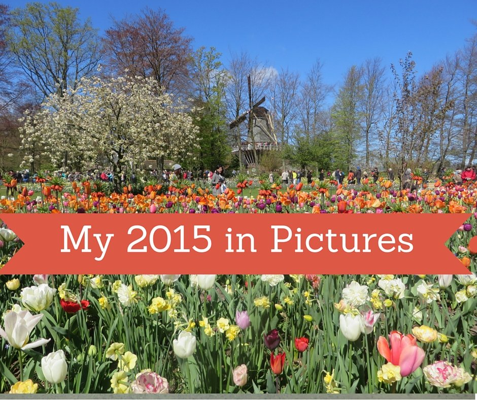 2015 in pictures